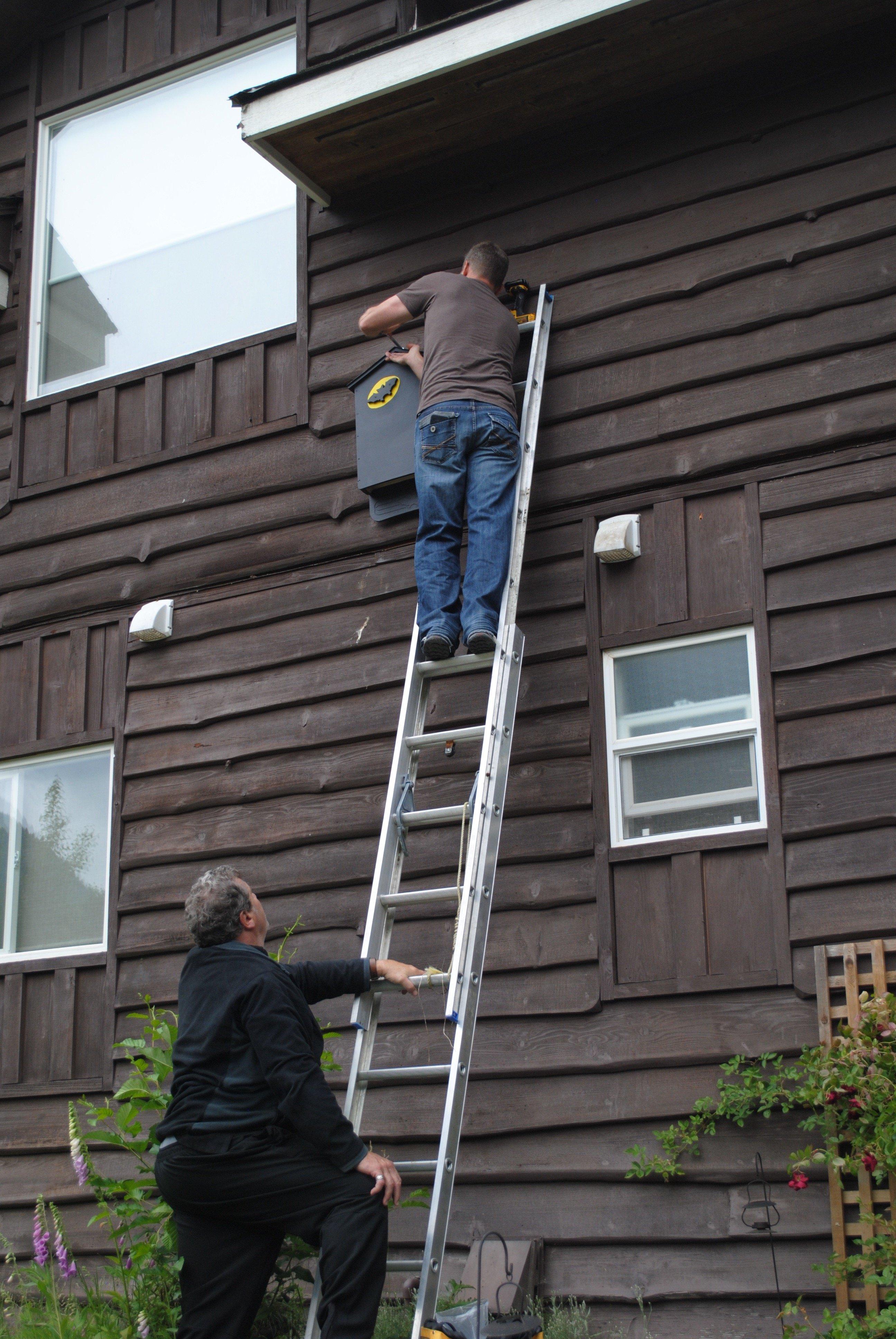 Installing bat house