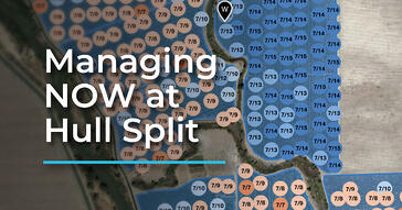 Managing NOW at Hull Split