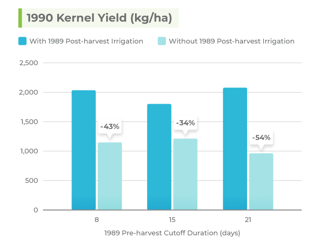Graph showing a reduced 1990 kernel yield for almond trees that received no post-harvest irrigation compared to trees that did receive post-harvest irrigation in 1989.