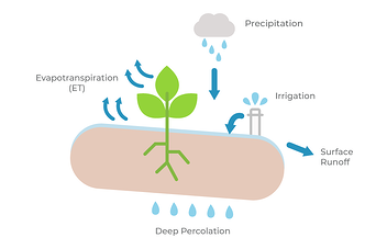Evapotranspiration process