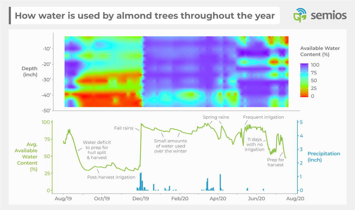 A graph showing how water is used by almond trees throughout the year. Available water content plus precipitation is plotted against the 2019-2020 season, which the least water available in the summer months and the water content being refilled in the fall months.